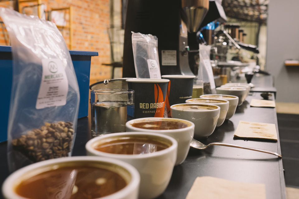 coffee cupping class