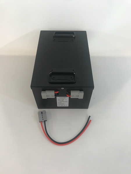 51.2v 50ah LiFePo4 pedicab battery in steel case  -$810