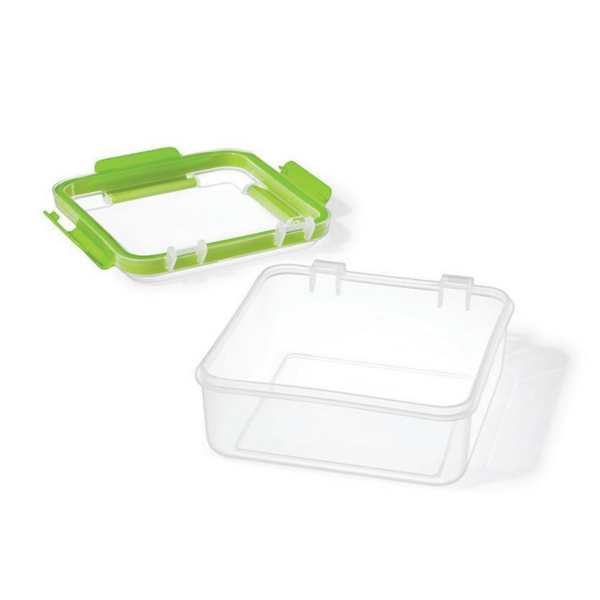 Easy Lunch Single Sandwich Container