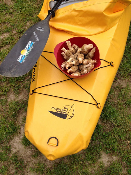 FORAGING BY KAYAK