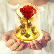 Load image into Gallery viewer, Eternal Rose Flower In Glass Dome