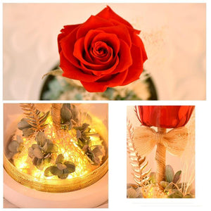 Eternal Rose Flower In Glass Dome