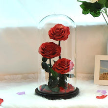 Load image into Gallery viewer, Preserved Roses In Glass Dome
