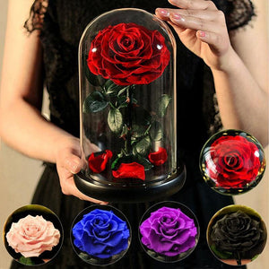 Forever Glowing Galaxy Roses