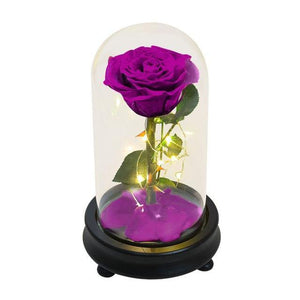 Beauty And The Beast LED Eternal Red Rose In Glass Dome - Galaxy Rose