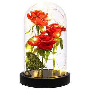 LED Enchanted Rose In Glass Dome