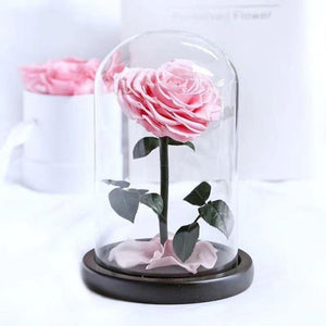 Heart Shaped Preserved Rose in Glass Dome