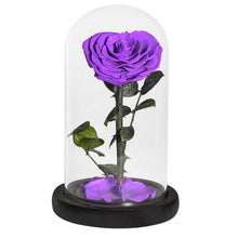 Load image into Gallery viewer, Heart Shaped Preserved Rose in Glass Dome