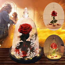 Load image into Gallery viewer, Silk Rose Flower in Glass Dome