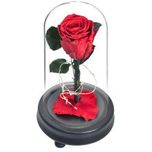 Load image into Gallery viewer, Love LED Red Rose