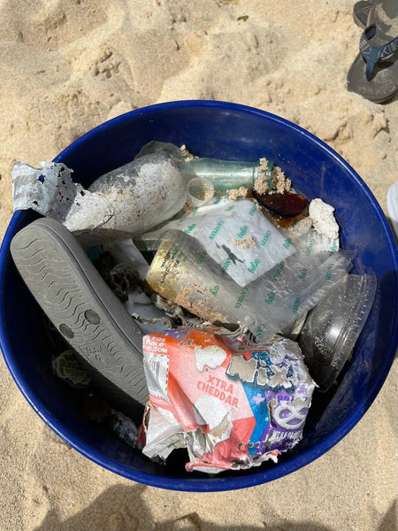 Bucket of microplastics at the beach cleanup in Hawai'i