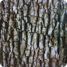 Load image in gallery viewer, HCA 111 tree bark camouflage