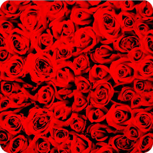 HOT-070 Hydrographic sheet roses