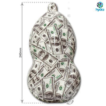 Load image in gallery viewer, HOT-110 Transfer Paper Dollars