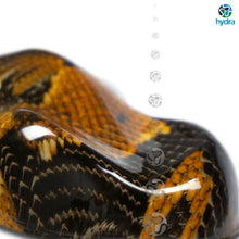 Load image into gallery viewer, HPA-004 Snake Skin Water Transfer Printing Foil