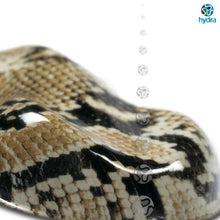 Load image into gallery viewer, HPA-066 Snake Skin Water Transfer Printing Foil