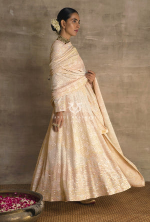 Load image into Gallery viewer, Anarkali Blush Pink