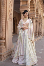 Chikankari Lehnega With Multi Sequins Lehenga Set