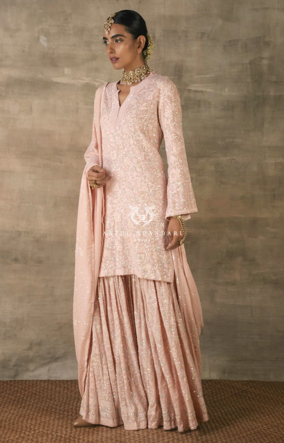 Load image into Gallery viewer, Gharara Blush Pink