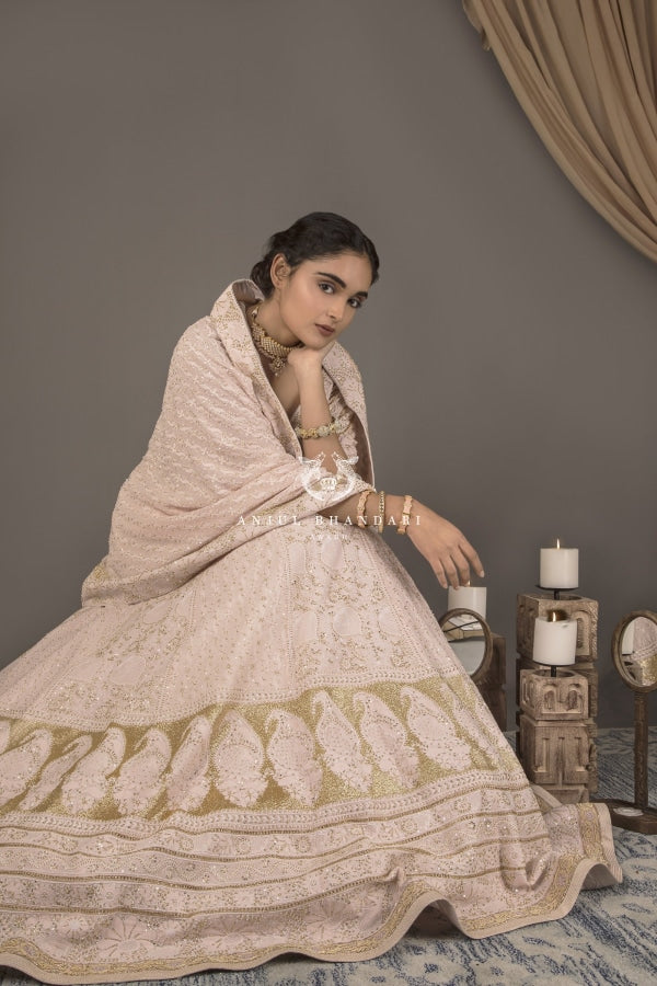 Load image into Gallery viewer, Lehenga Blush Pink Set