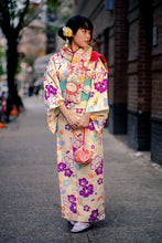 Load image into Gallery viewer, Pastel Traditional Women's Kimono