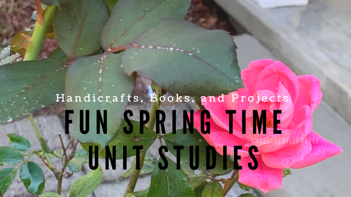 Unit Study Ideas for Spring