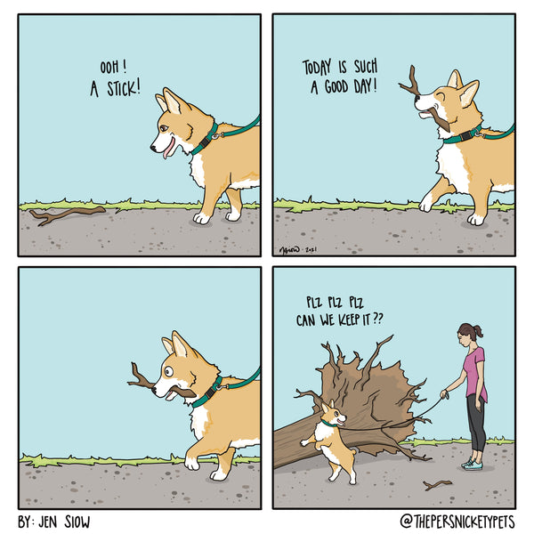 """The Persnickety Pets comic: """"Big Stick"""" 5/30/21"""
