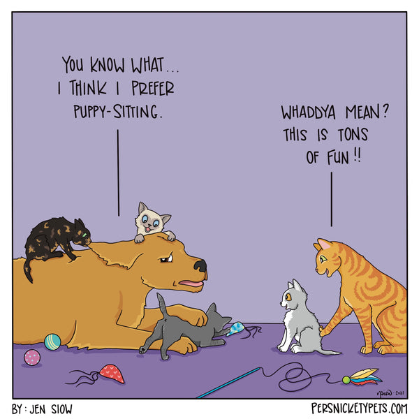 """The Persnickety Pets comic by Jen Siow: """"Kitty-Sitting"""""""