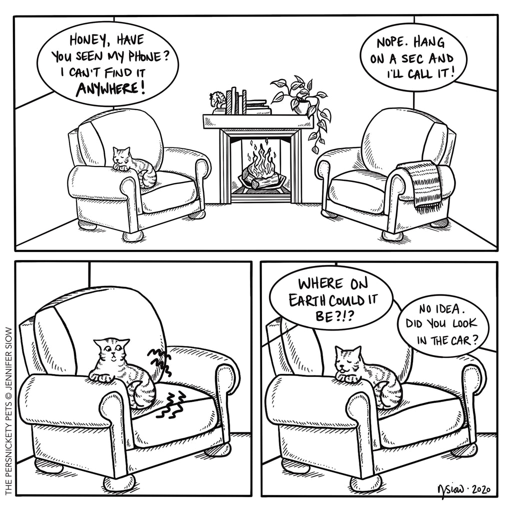 Persimmon Peak: The Persnickety Pets comic 11/29/20