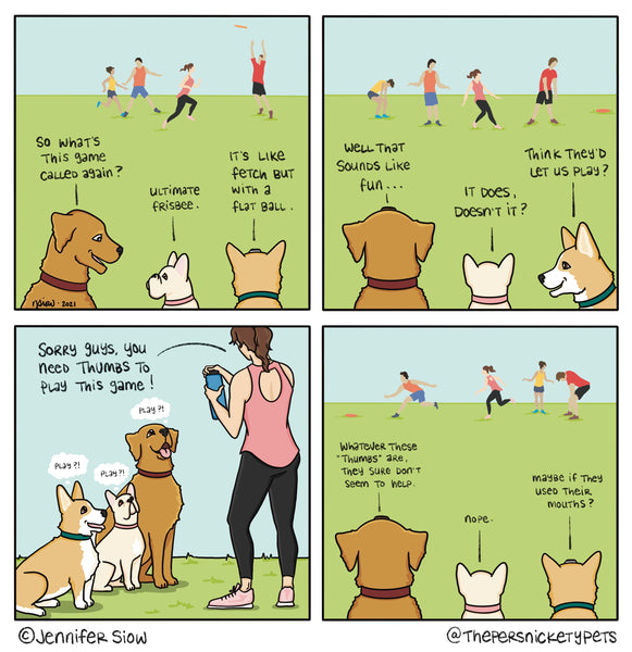 Persnickety Pets: Ultimate frisbee comic