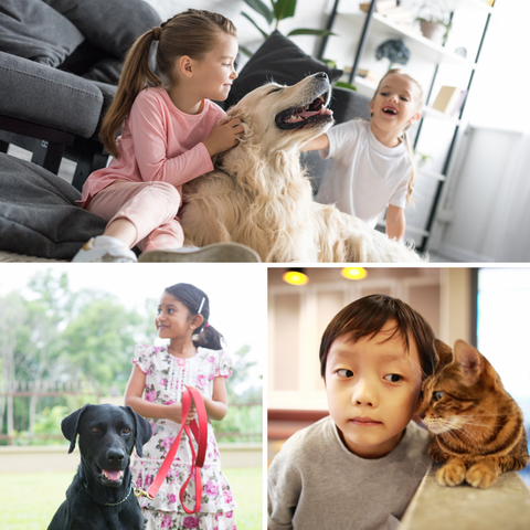 Persnickety Pets: children and pets