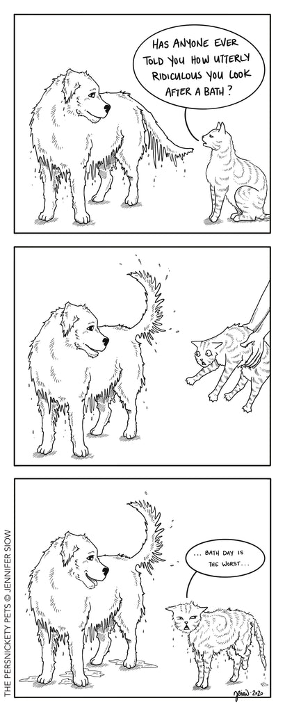 Persnickety Pets: The Persnickety Pets Comic 12/13/20