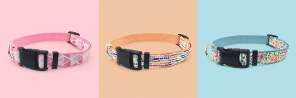 Persnickety Pets: classic dog collars