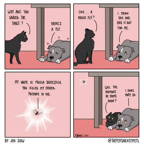 """The Persnickety Pets comic by Jen Siow: """"Housefly"""""""