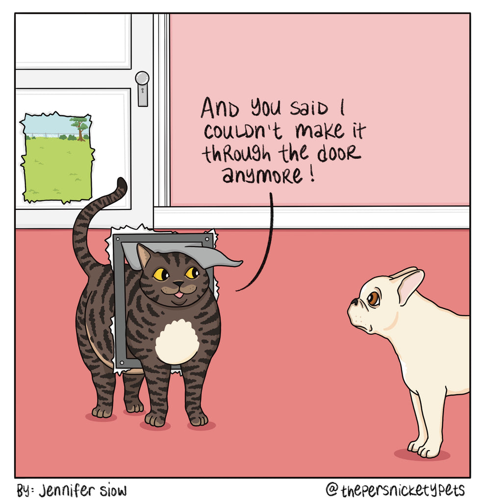 Persnickety Pets: The Persnickety Pets comic 4/11/21