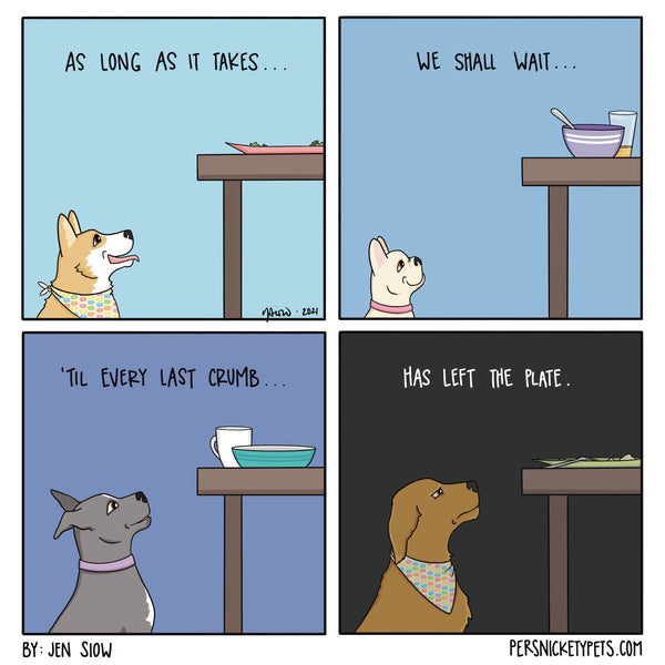 """The Persnickety Pets comic by Jen Siow: """"Code of the Begging Dogs"""""""