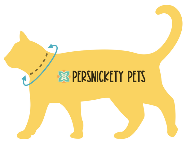 Persnickety Pets: How to measure your cat for a collar or bandana