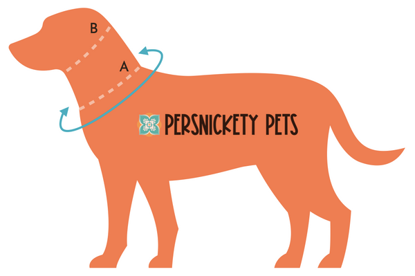 Persnickety Pets: How to measure your dog for a collar or bandana