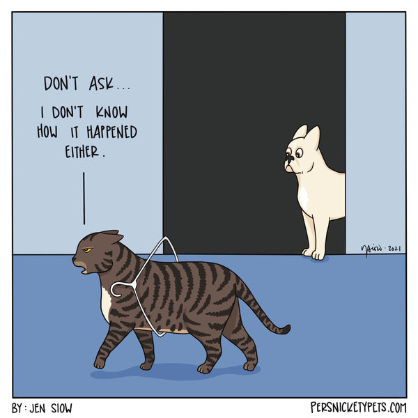 """The Persnickety Pets comic by Jen Siow: """"Hung Up"""""""