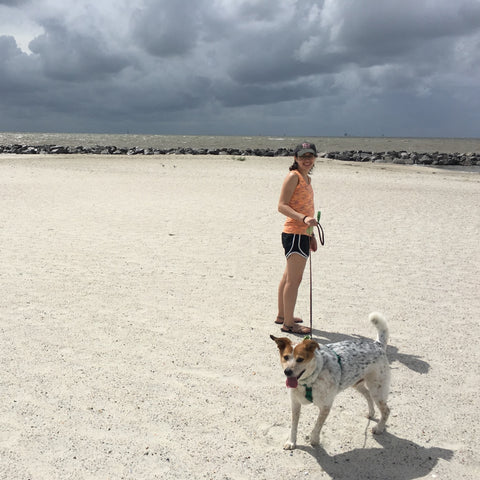 Persimmon Peak: Balou goes to the beach, Dauphin Island, AL