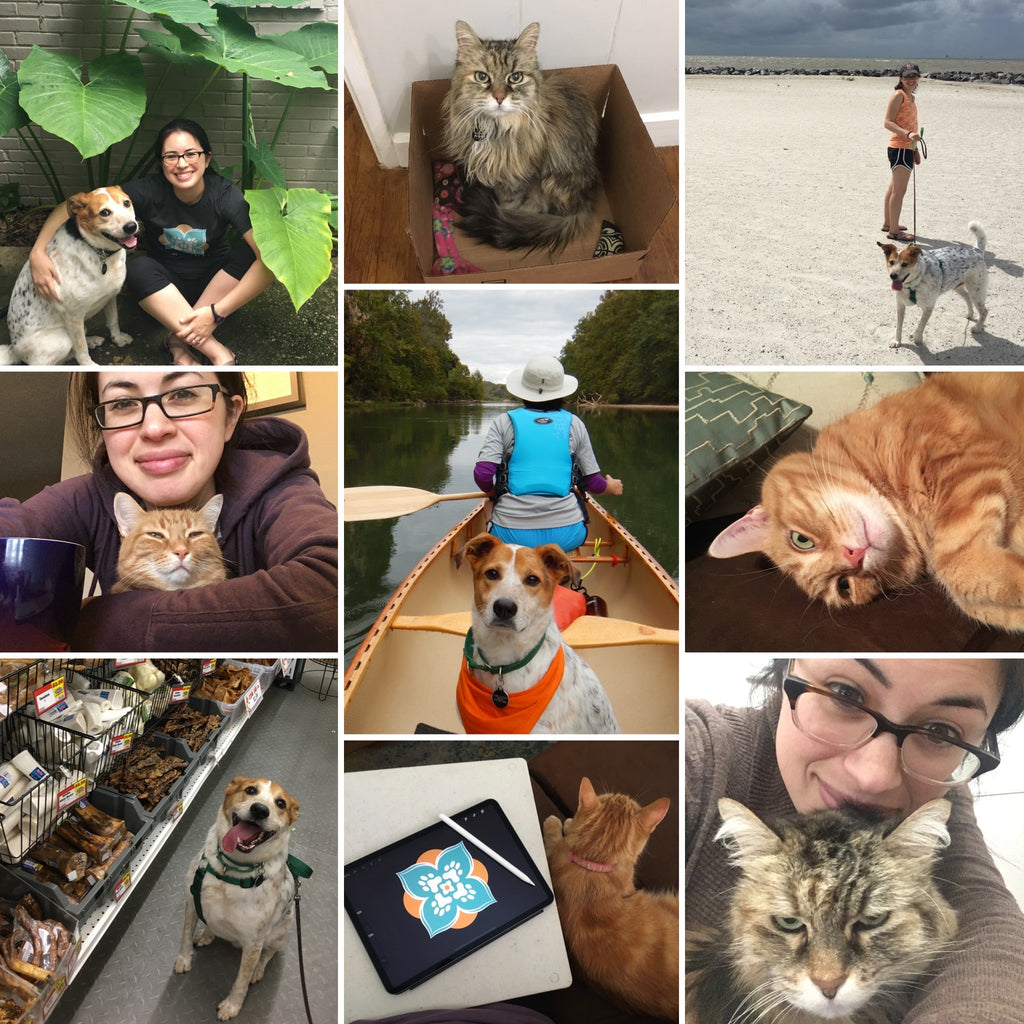 Persnickety Pets: Jen and her fur babies