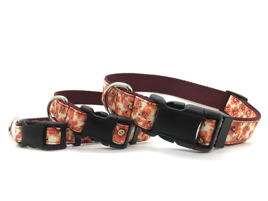Persimmon Peak: merlot fall flowers classic dog collar, stacked