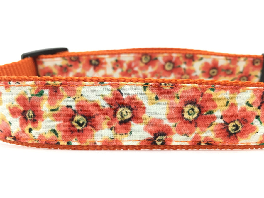 Persimmon Peak: pumpkin fall flowers classic dog collar, detail