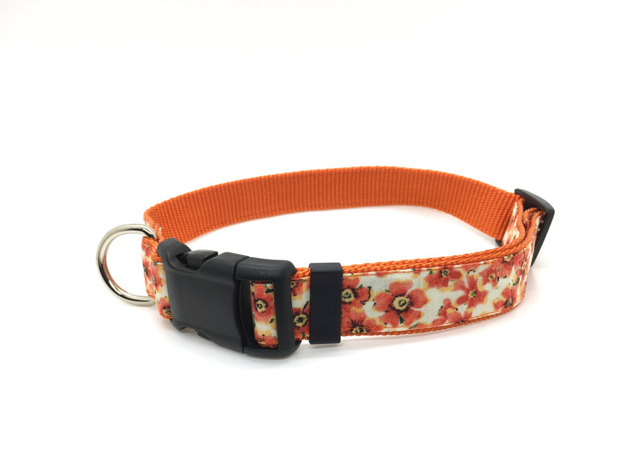 Persimmon Peak: pumpkin fall flowers classic dog collar, single