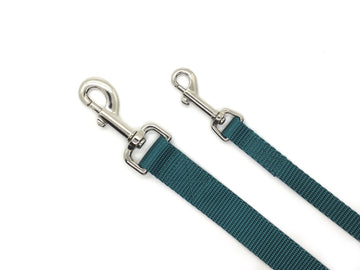 Persnickety Pets: teal dog leash, 2 sizes