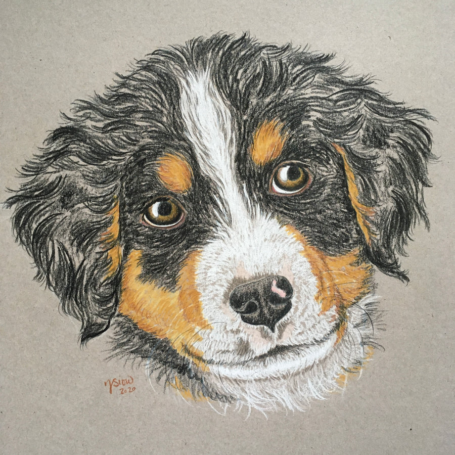 Persnickety Pets: Custom pet portrait, Jupiter