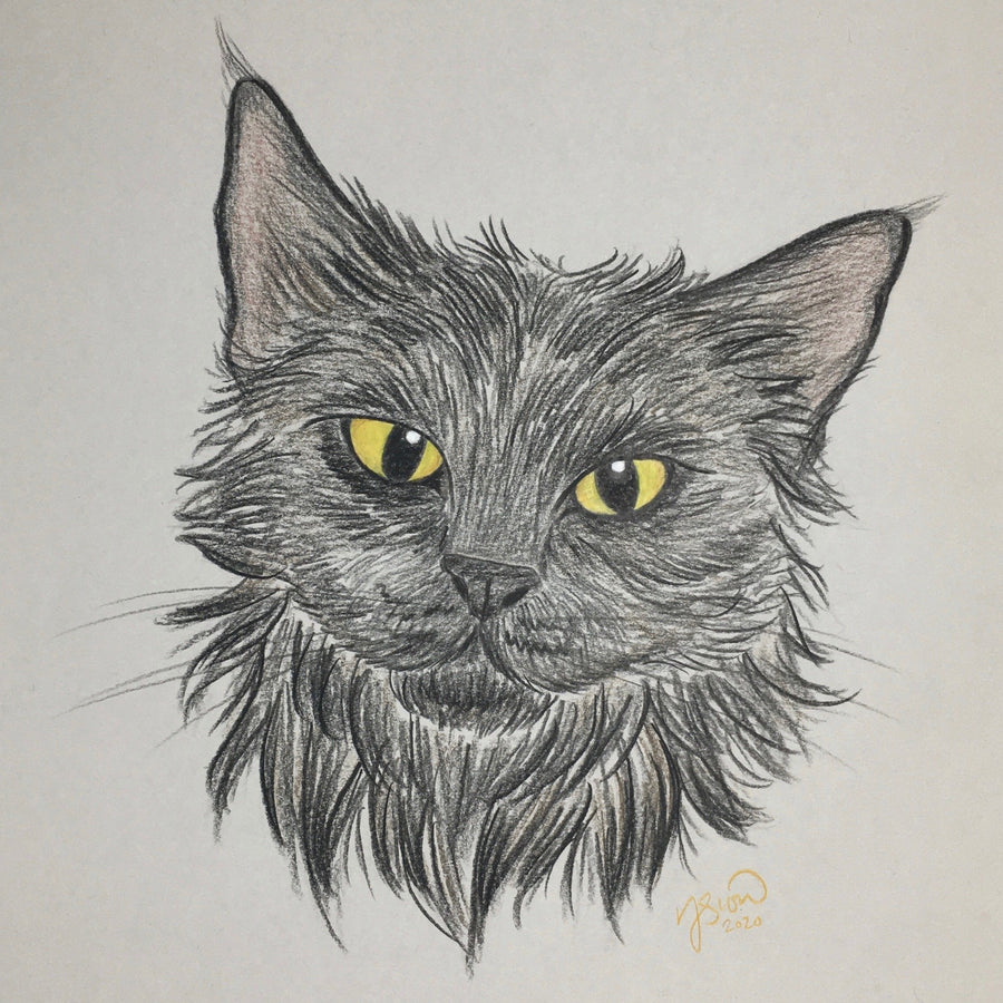 Persnickety Pets: pet portrait, Mercedes