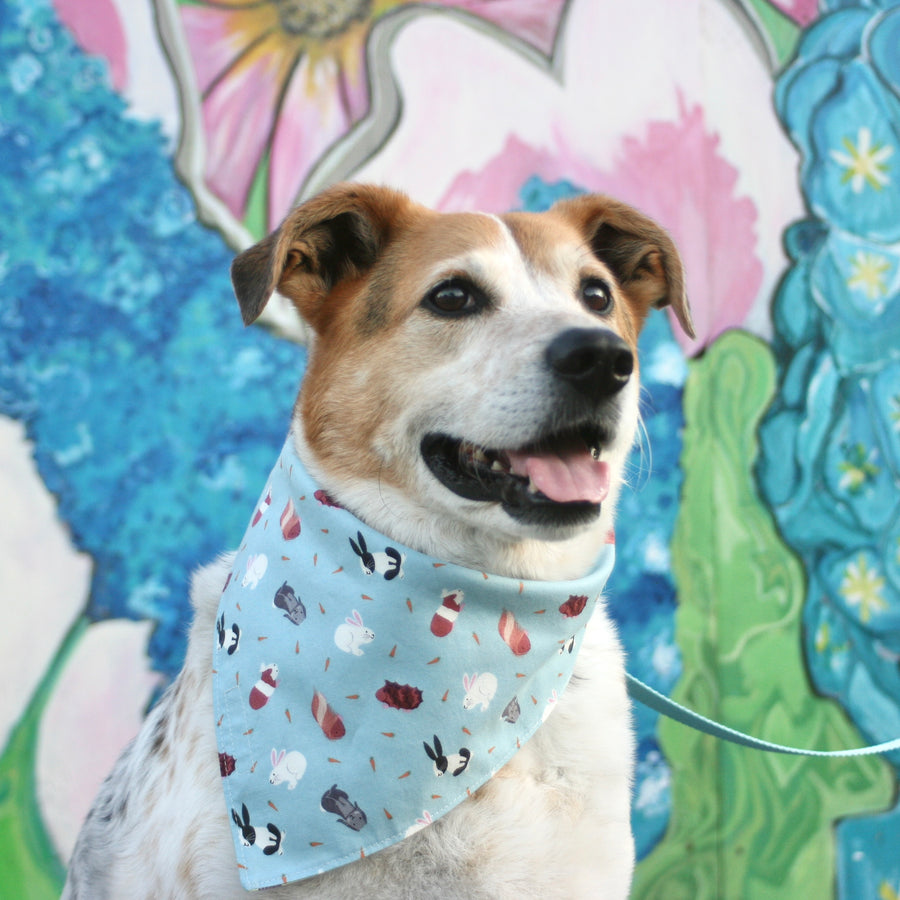 Persnickety Pets: Small friends reversible bandana, Balou modeling back