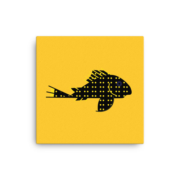 L018 Golden Nugget Plecostomus (Baryancistrus sp.) Canvas 12