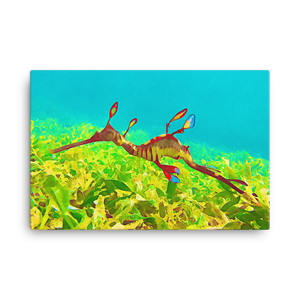 Weedy Sea Dragon Canvas